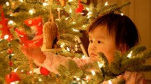 Have a Wonder-full Christmas Season