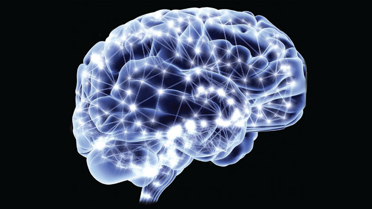 Brain studies homosexuality and christianity
