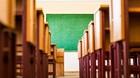 Christian Kids in Public School
