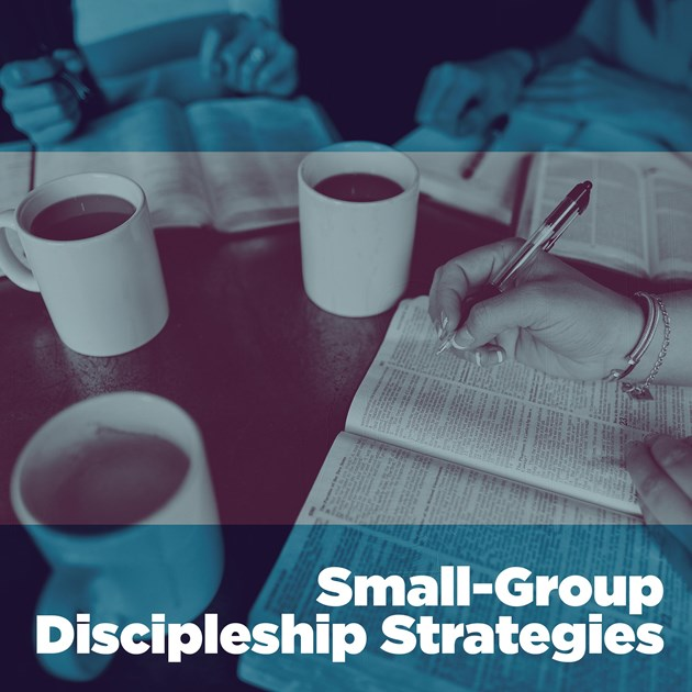group discipleship strategies small groups