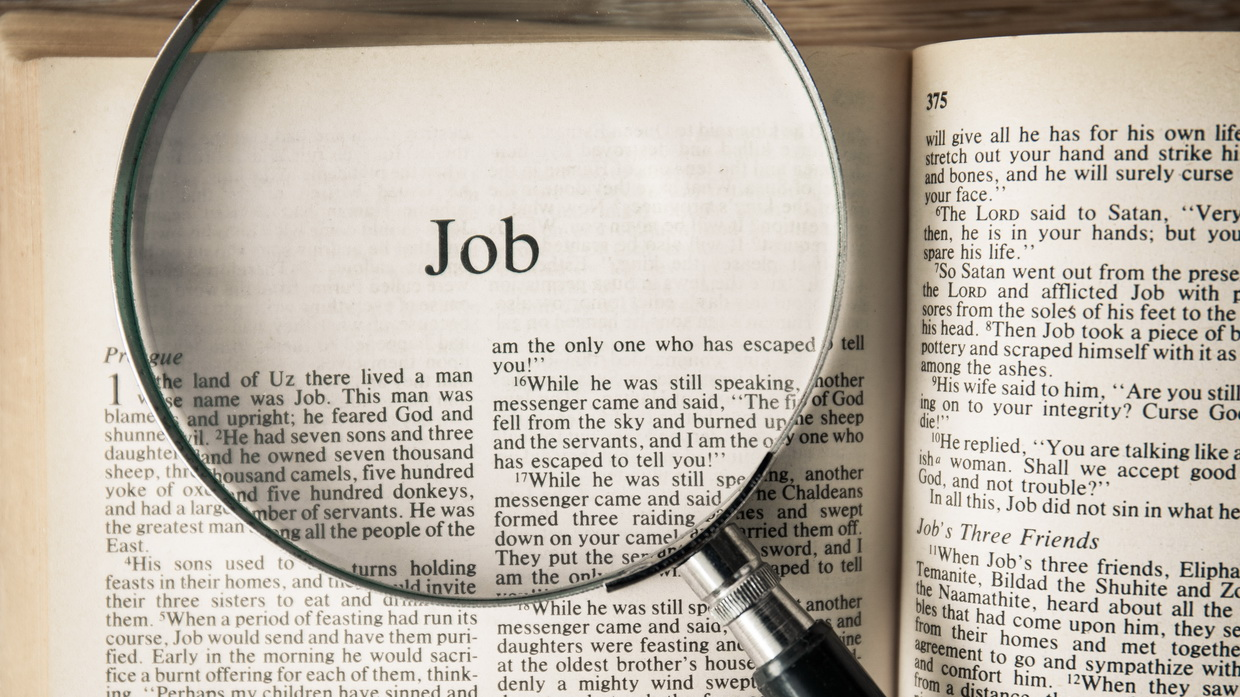 a review of the book of job in the bible Bible classbooks, workbooks, class books and study guides teens, home school, group, young adult church of christ in zion  bible classbook on job.