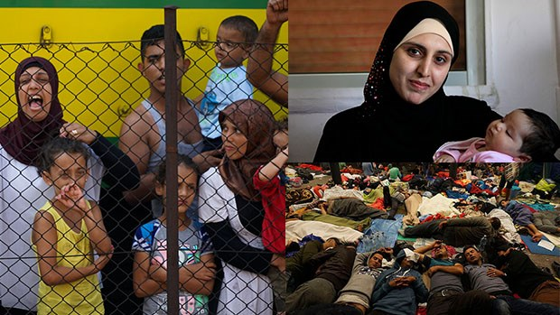 Love the Refugee With the Compassion Christ Has Shown You