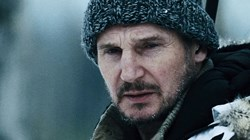 Liam Neeson in 'The Grey'