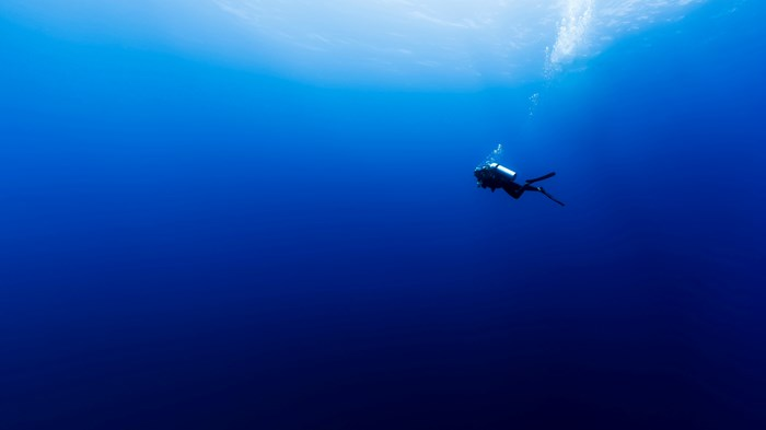 Deep AND Wide