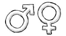 Complementarian Versus Egalitarian