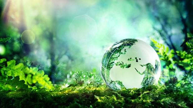 Praising Earth's Maker