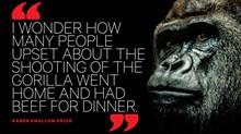A Dead Gorilla Highlights Zoos' Bigger Problem