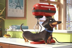 'The Secret Life of Pets'