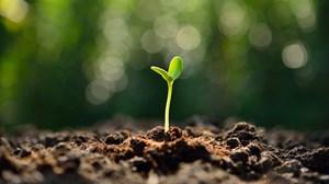 My Top 10 Church Planting Tips