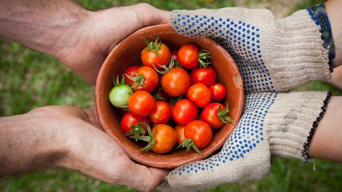 How a Farm-to-Table Restaurant Evolved into a Homegrown Church