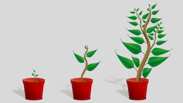 Increasing Evangelism in Church Planting