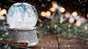Life in a Snow Globe