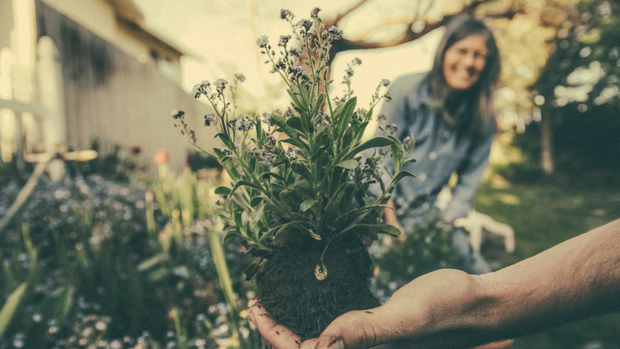 Three Church-Planting Practices That Need To Die