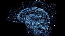Know Brain, Know Gain