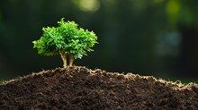 Seven Reasons to Lead Your Church in Church Planting