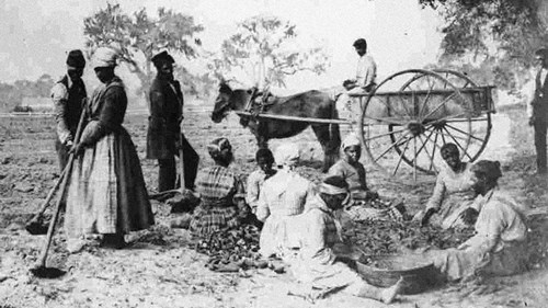 Black Christianity Before the Civil War: Did You Know?