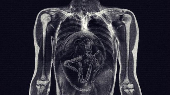 Alien_inside
