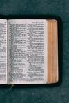 Top 7 Study Bibles