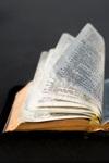 Top 10 Bible Studies 2017