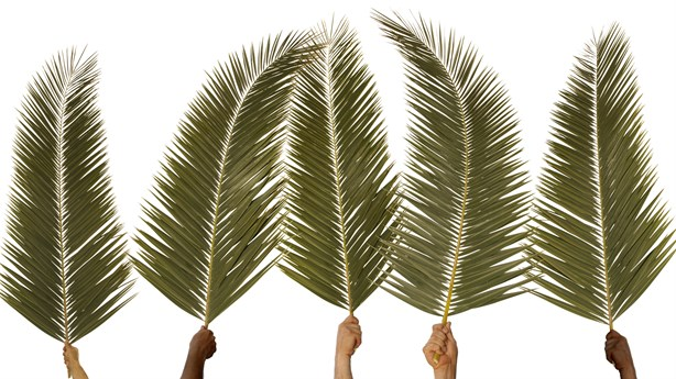 Top 5 Palm Sunday Sermons | Preaching Today