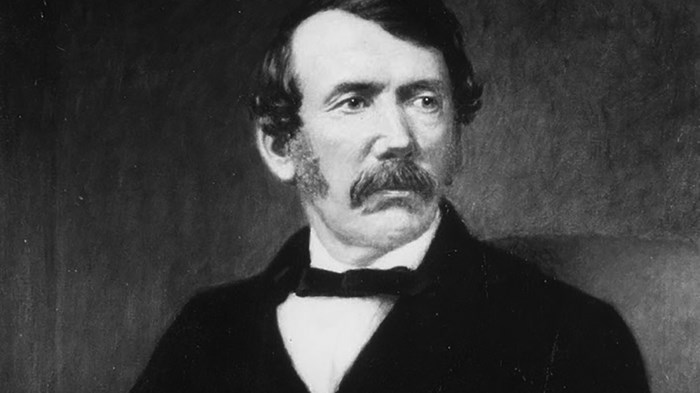 Discovering David Livingstone
