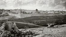 Zion Haste