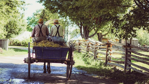 What the Amish Can Teach Us About Community