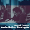 Small-Group Assimilation Strategies