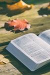 Top 10 Bible Studies for Fall 2018