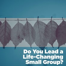 Do You Lead a Life-Changing Small Group?
