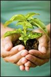 Spiritual Growth Assessment Pack