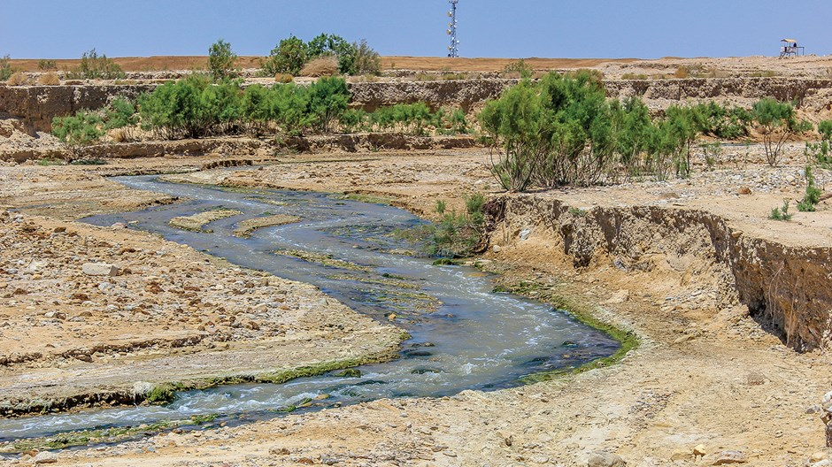 Can Restoring the Jordan River Build Peace in the Holy Land?