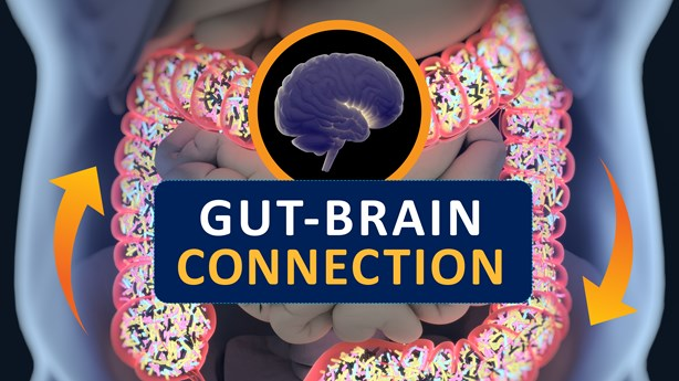 Gut Health Instrumental in Shaping Thought Patterns