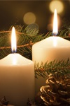 Advent: A Savior for All People: Church Bundle