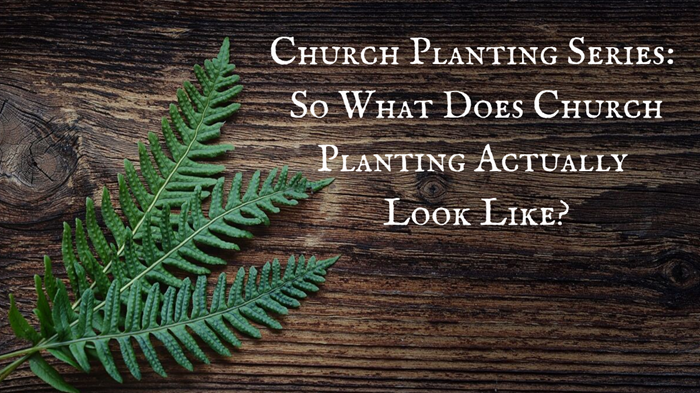 Church Planting Series: So What Does Church Planting Actually Look Like?